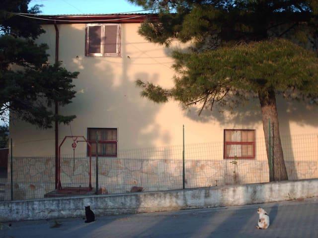 Gargano villa Matassa casa 4 posti - San Menaio