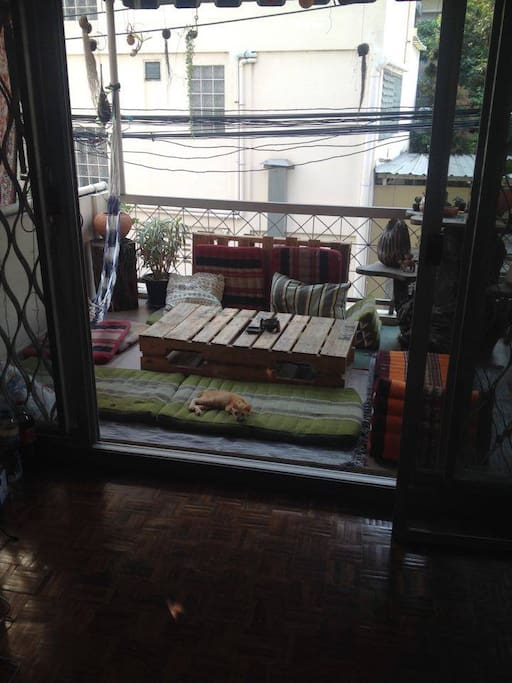 shared patio area with little cat