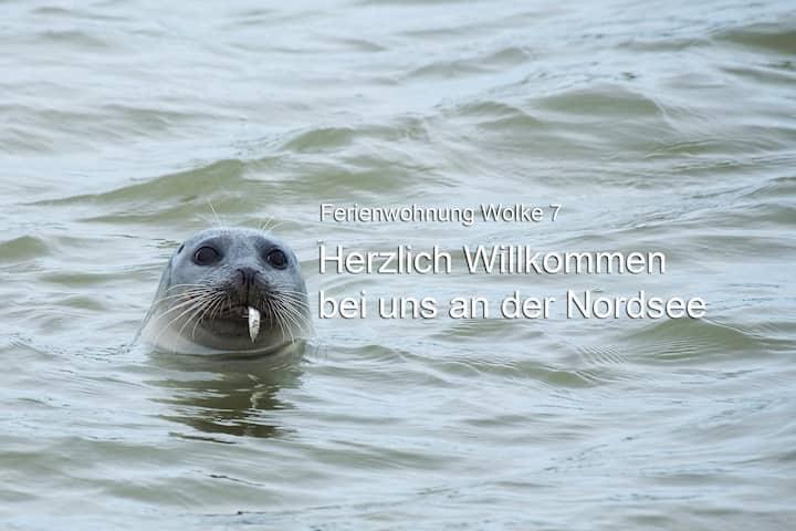 Ferien (mit Hund) an der Nordsee für 4 Personen