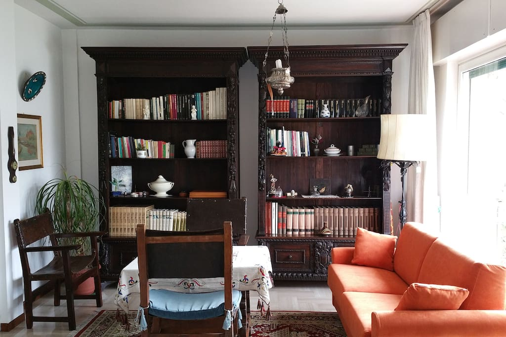 Library on living room
