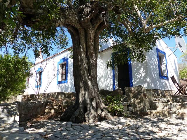 Beautiful Rural Open-Plan Guest Cottage - Quelfes - Guesthouse
