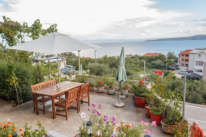 Studio apartment Ante SA2 Brela, Riviera Makarska