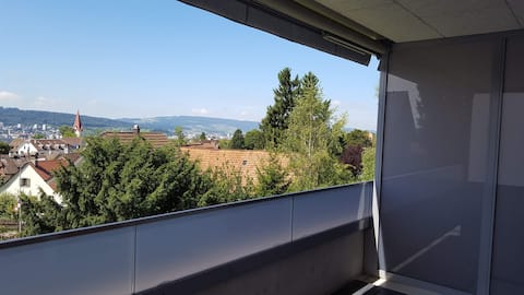 Flat close to the city, forest and river
