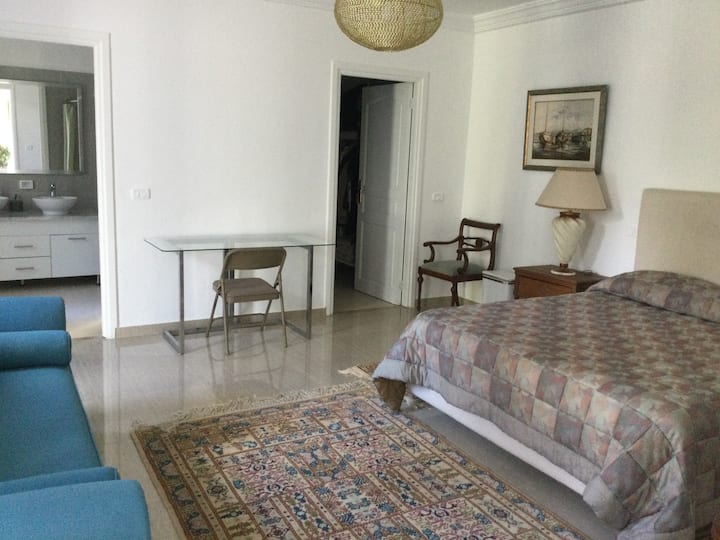 Very large private bedroom in a fancy flat
