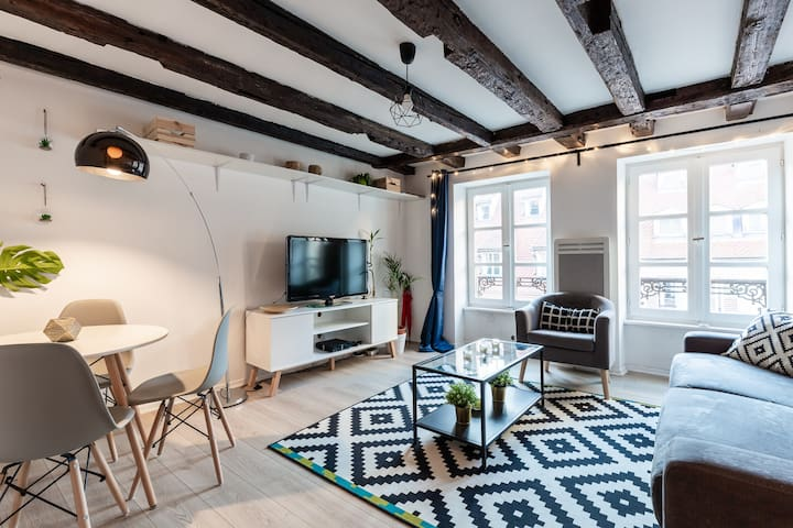 Cosy Apartment - Strasbourg CityCenter Hypercentre
