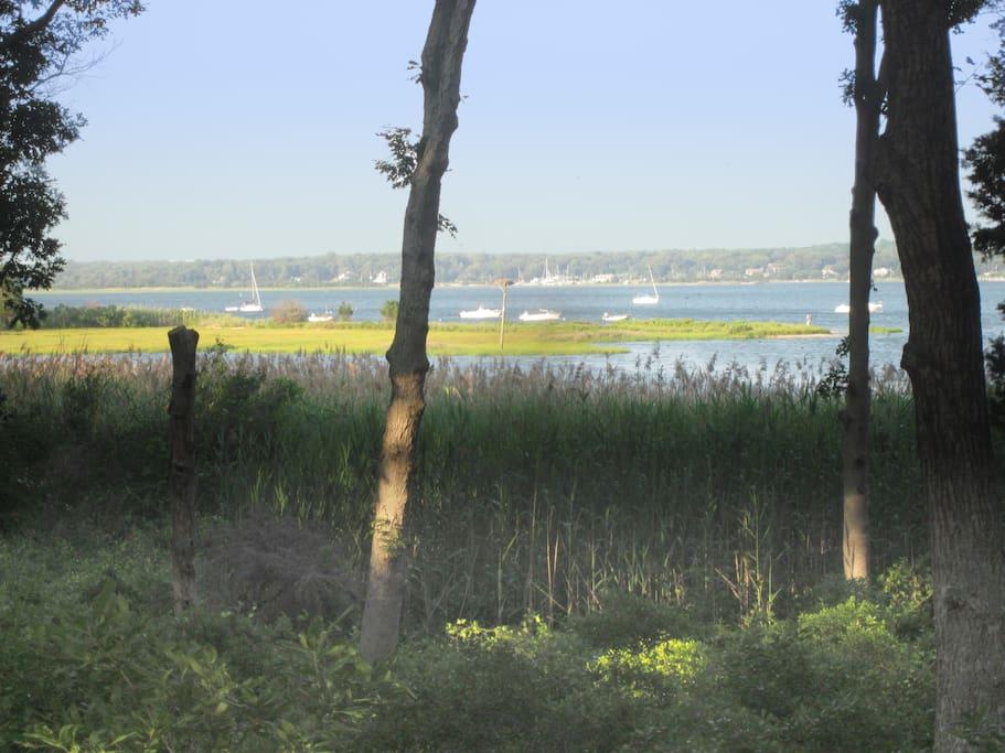 View from Community Association Park - 3 Mile Harbor & Hands Creek