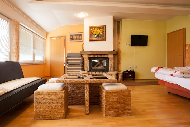 Guest House Čelan - Family Room