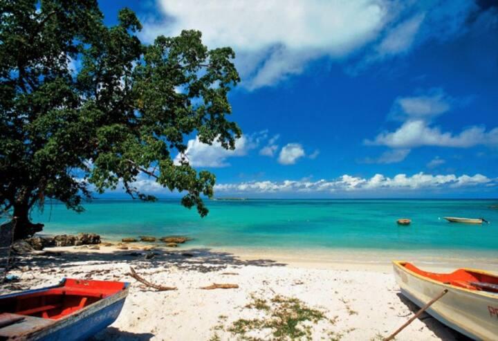 Luxury Oasis w/Ocean view, 16m pool, 5min to beach