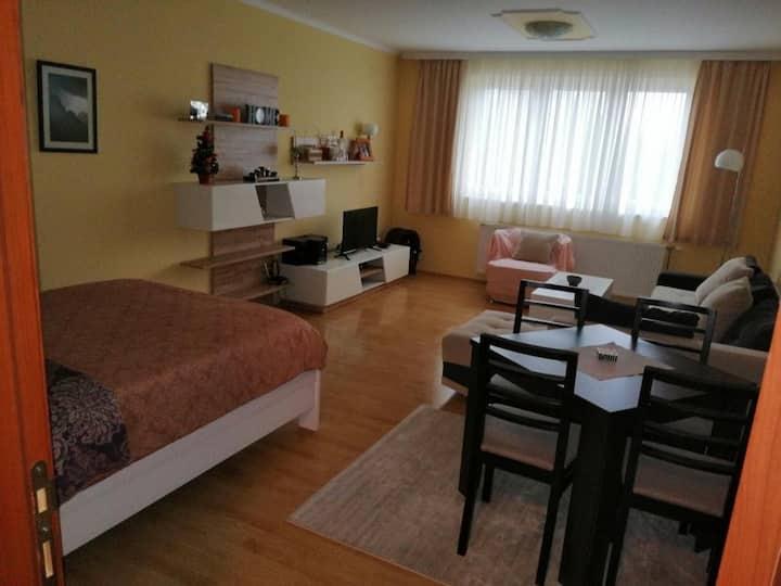 Apartman Kovacevic