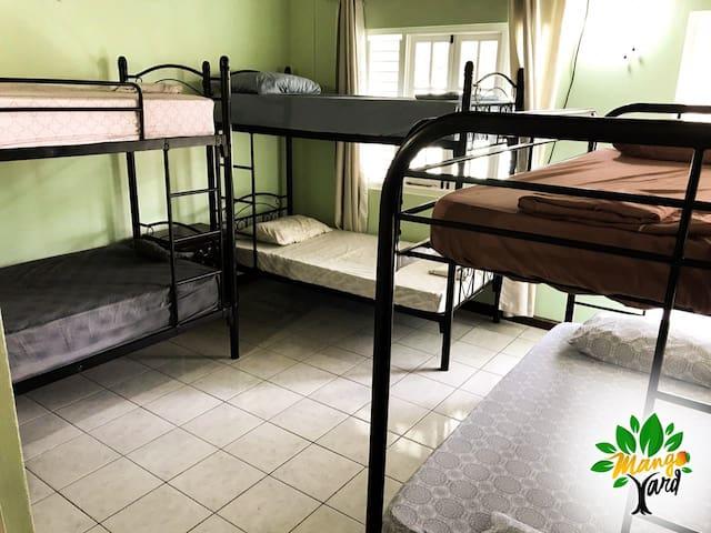 Mango Yard- Balcony Bedroom Shared (6 Beds)
