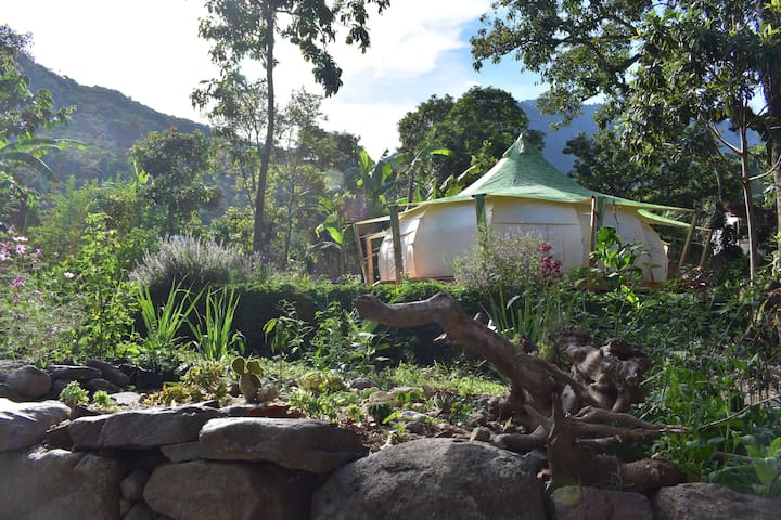 Magical Glamping Experience