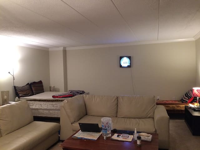 Luxurious & Spacious Fully Furnished Studio