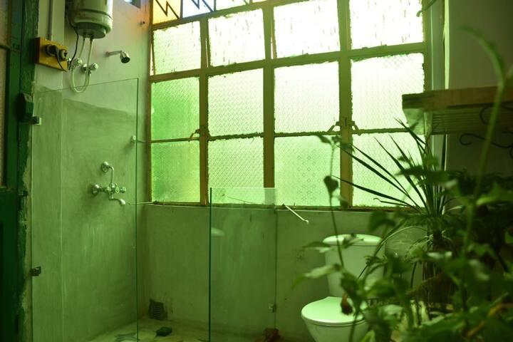 Private bath: shower view