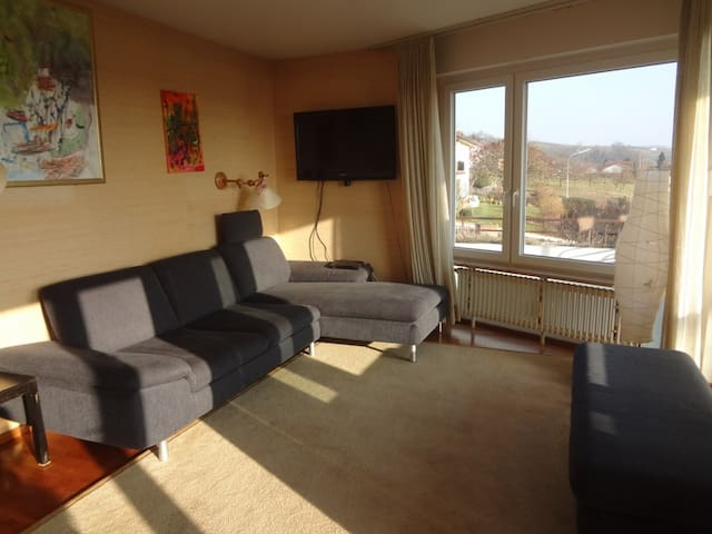 Holiday department 3-country view - Fischingen - Apartment