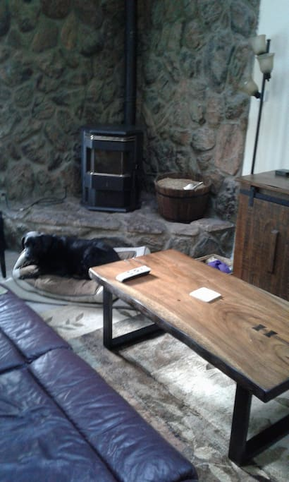 Dog (not included) and pellet stove
