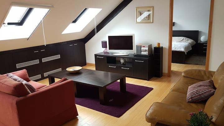 Sunny apartment Batory in Osijek centre