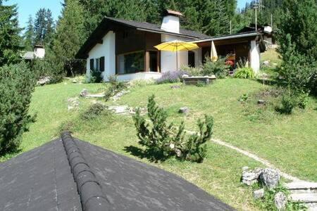 Haus Schwarz - Savognin - บ้าน