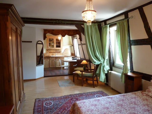 Studio standing in the historical heart of Colmar - Colmar - Apartmen