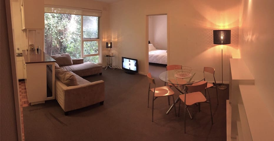 Entire 1 Bedroom Apartment