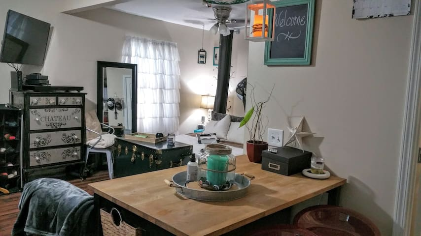 Charming Studio, walk to d.t. Royal Oak & Ferndale - Ferndale - Talo