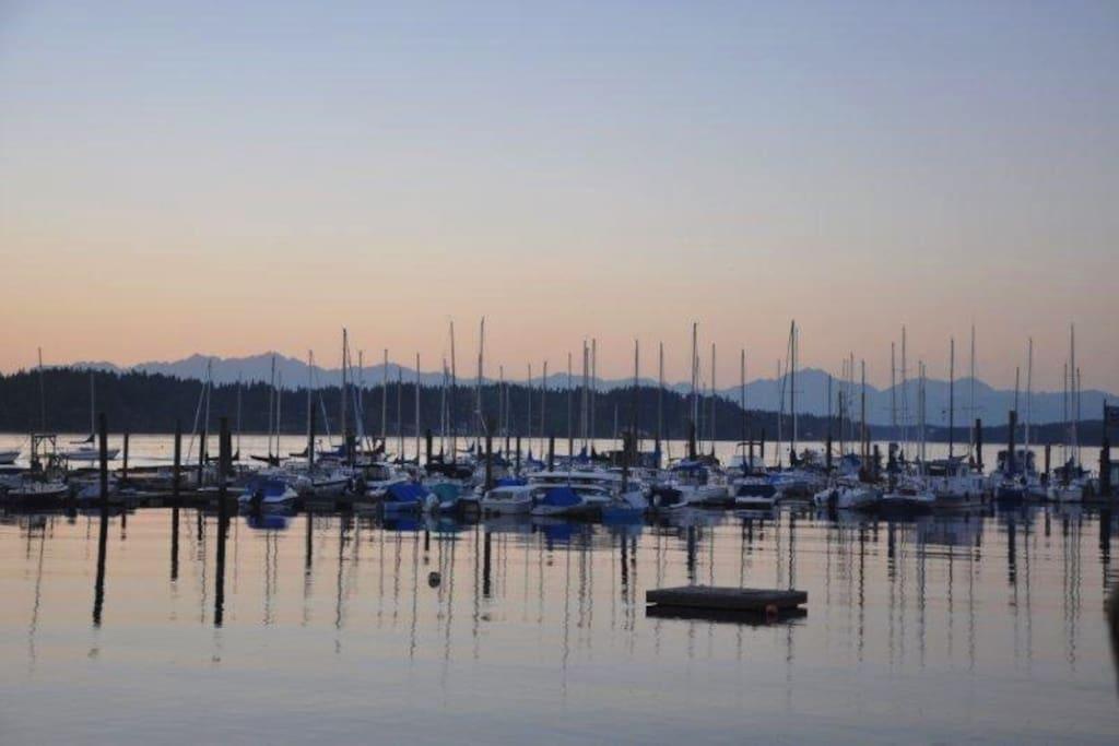 Boston Harbor Marina views