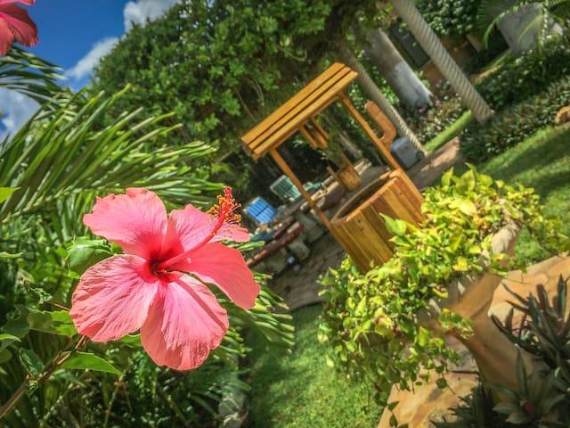 ¡Un Oasis en Yucatán! Bellísimos jardines rodean tu habitación