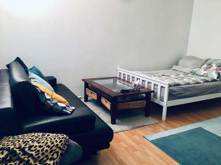 Cute & Cozy Apartment near city center