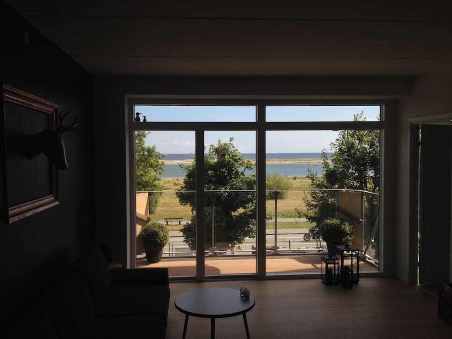 View from the livingroom