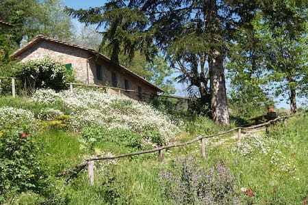 Rural House near Lucca - Monsagrati