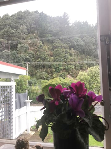Zions Hill Bed & Breakfast, Thames-Coromandel