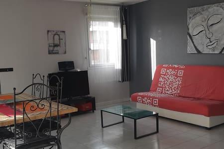 T2 de 56 m2 banlieue de TOULOUSE C 7