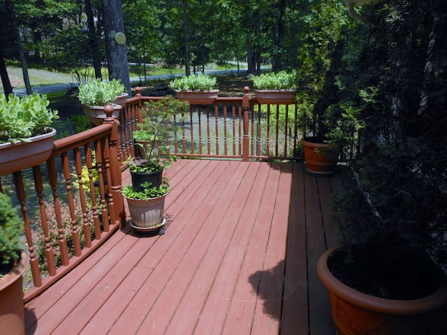Front Deck with Lots of Sunshine