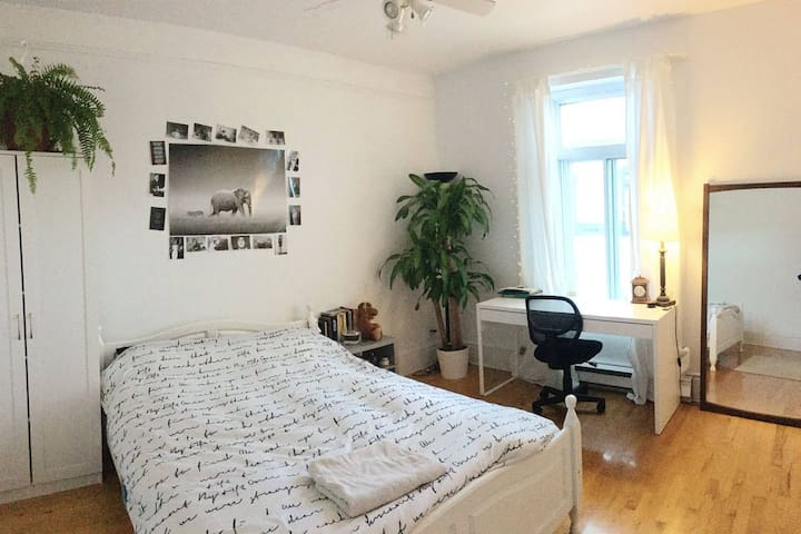 Beautiful room in flatshare, very near to Downtown