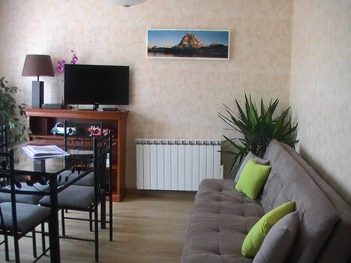 Appartement 1 chambre ASSAT vue sur les Pyrénées