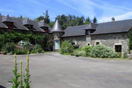 Le Petit Chateau, Matisse