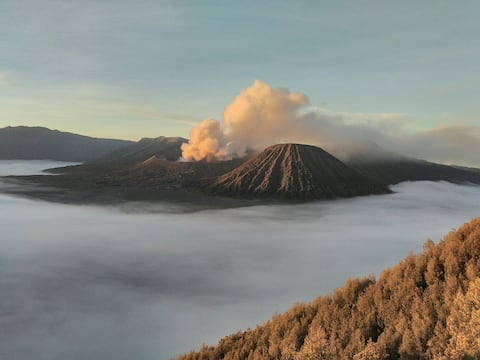 Candani guesthouse, in d'face of bromo