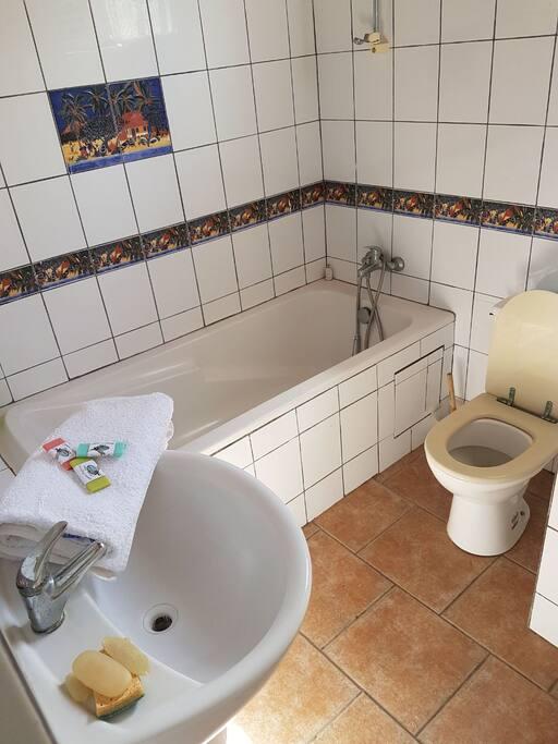 Salle de bain fonctionnelle. Baignoire et douche.