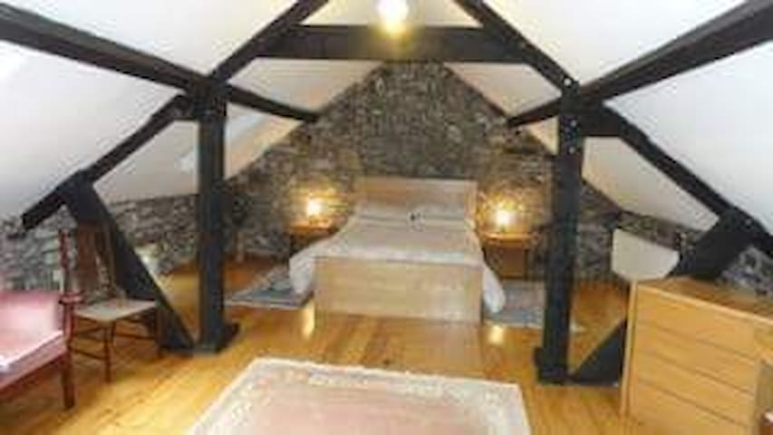 Wilde Cottage Retreat - Kilkenny - Huis