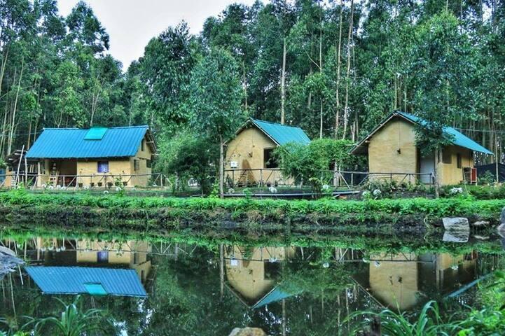 Anandavan jungle kanthalloor