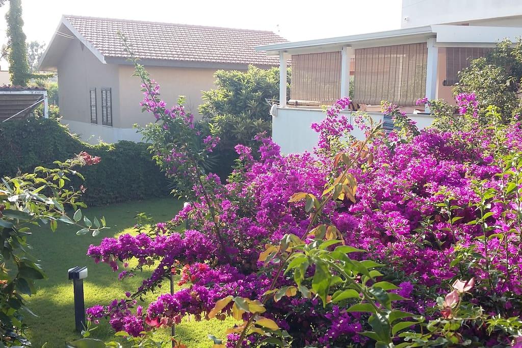 Casamarina case in affitto a marina di modica ragusa for Case in affitto a ragusa arredate