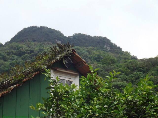 Viaje sem desculpas, apenas vá! - Rio dos Cedros - Bed & Breakfast