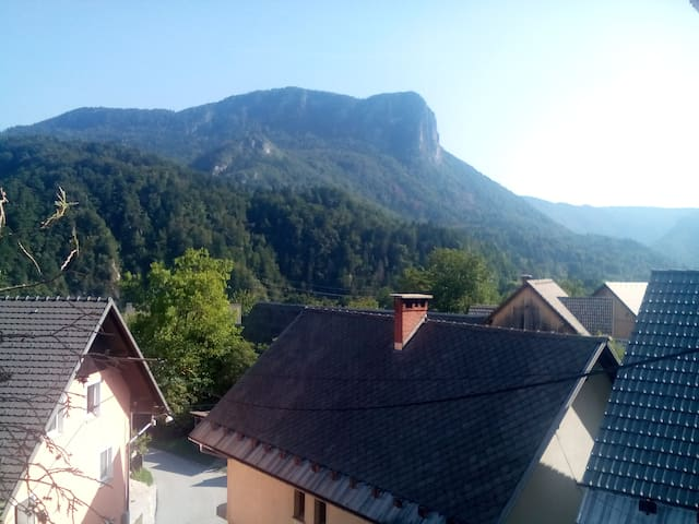 2 room apartment in Alex Guest House near Bled