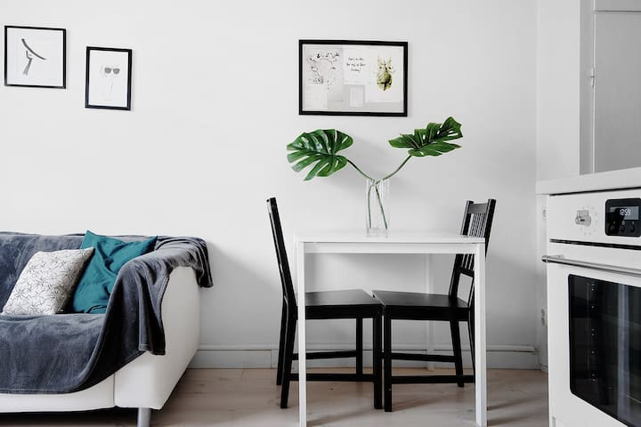 Entire apartment in Södermalm - Stockholm City