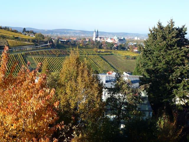 Appartement mit schöner Aussicht nahe bei Wien
