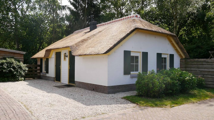 Lovely cottage in Putten