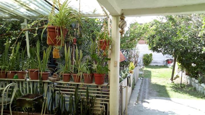 Habitación y Jardín/Huerto natural