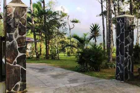CABAÑA VISTA A LA MONTAÑA, CON CENA - Panama