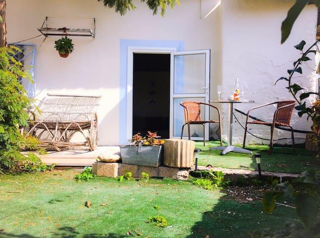 House with a garden in neve zedek