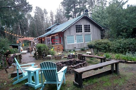 Available President's Day Wkend-NICE Cabin-Wifi - Grayland