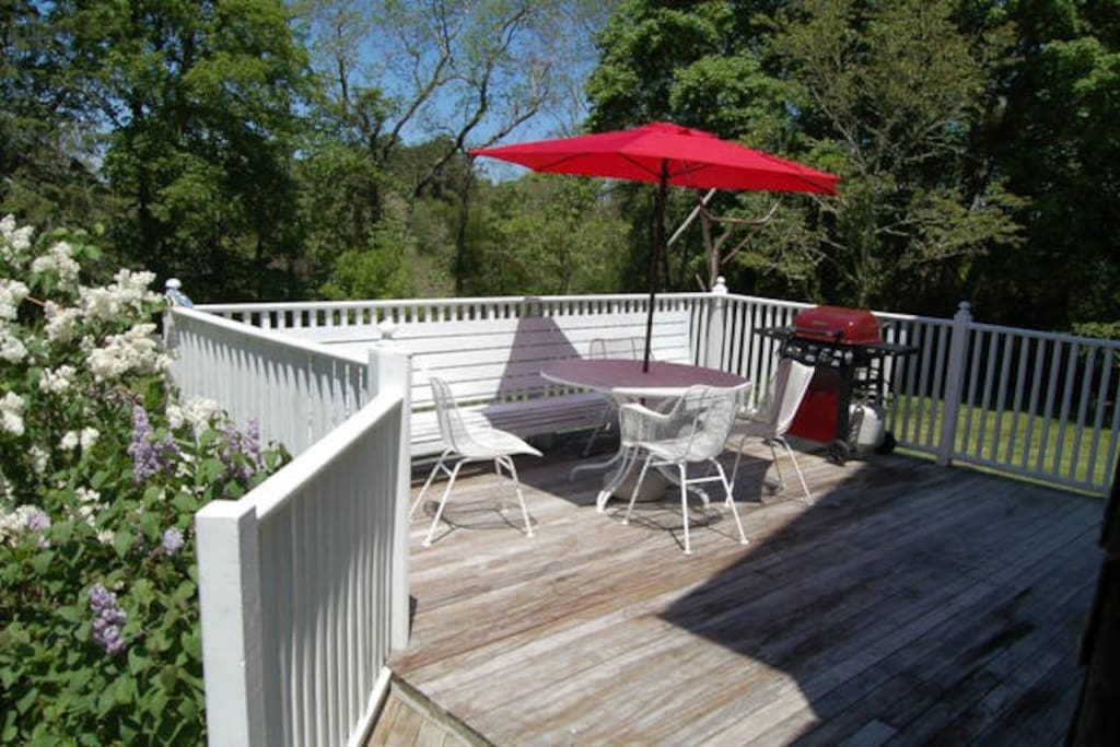 Enjoy dinner outside on back deck with table, chairs and grill.